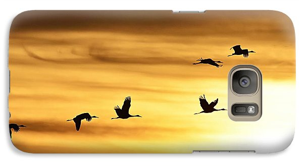 Galaxy Case featuring the photograph Cranes At Sunrise 2 by Larry Ricker