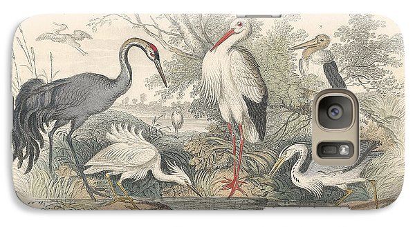 Stork Galaxy S7 Case - Cranes by Dreyer Wildlife Print Collections