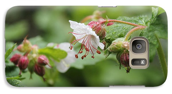 Cranesbill Raindrops Galaxy S7 Case