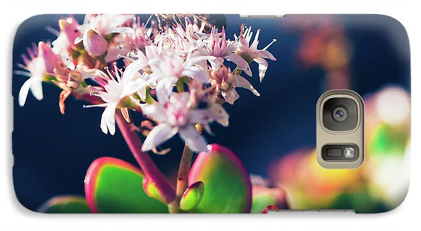 Galaxy Case featuring the photograph Crassula Ovata Flowers And Honey Bee by Sharon Mau