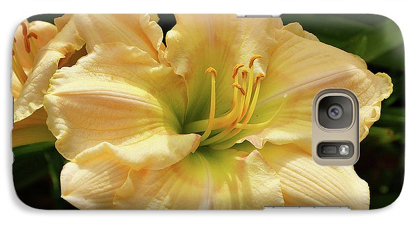 Galaxy Case featuring the photograph Cream Daylily by Sandy Keeton