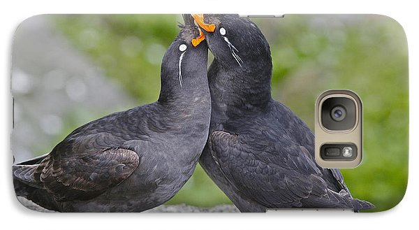 Crested Auklet Pair Galaxy S7 Case