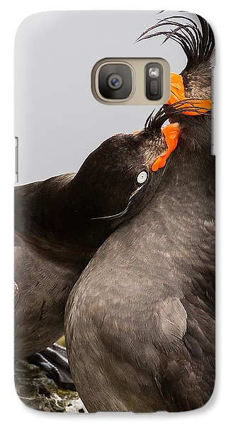Crested Auklets Galaxy Case by Sunil Gopalan