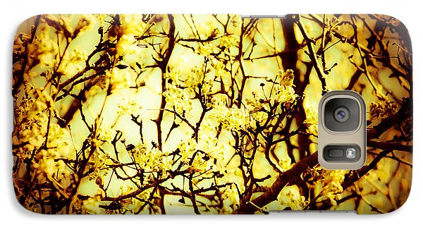 Galaxy Case featuring the photograph Crip L by Robin Coaker