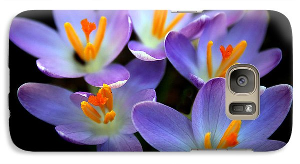 Galaxy Case featuring the photograph Crocus Aglow by Jessica Jenney