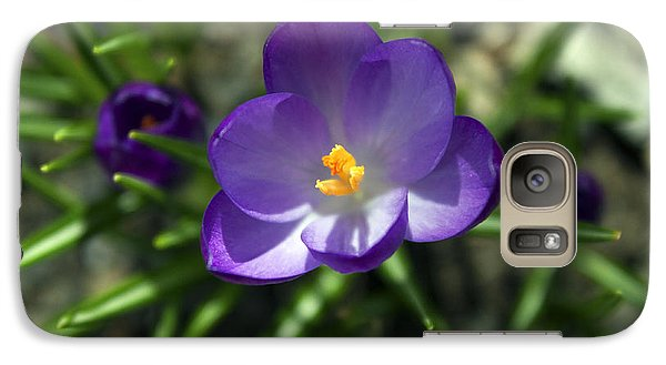 Galaxy Case featuring the photograph Crocus In Bloom #1 by Jeff Severson