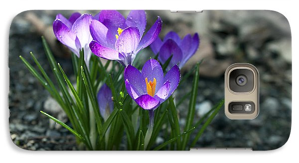 Galaxy Case featuring the photograph Crocus In Bloom #2 by Jeff Severson