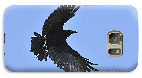 Crow In Flight Galaxy S7 Case