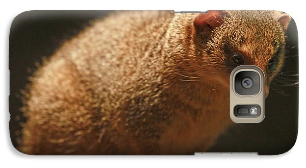 Galaxy Case featuring the photograph Curiosity At Rest by Laddie Halupa
