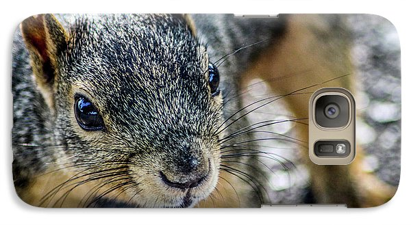 Galaxy Case featuring the photograph Curious Squirrel by Joann Copeland-Paul