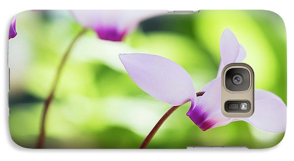 Galaxy Case featuring the photograph Cyclamen Persicum by Tim Gainey