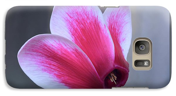 Galaxy Case featuring the photograph Cyclamen Portrait. by Terence Davis