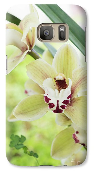 Galaxy Case featuring the photograph  Cymbidium Orchid by Tim Gainey