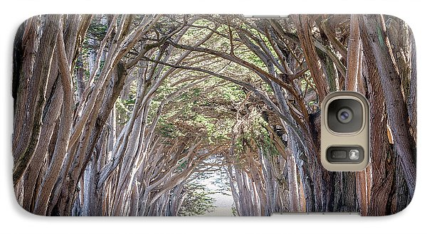 Galaxy Case featuring the photograph Cypress Embrace by Everet Regal