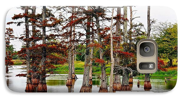 Galaxy Case featuring the photograph Cypress In Autumn by KayeCee Spain