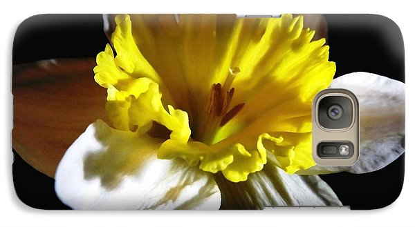 Galaxy Case featuring the photograph Daffodil 2 by Rose Santuci-Sofranko