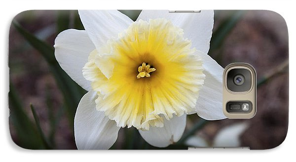 Galaxy Case featuring the photograph Daffodil At Black Creek by Jeff Severson