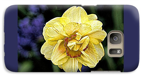 Galaxy Case featuring the photograph Daffodil Dallas Arboretum by Diana Mary Sharpton