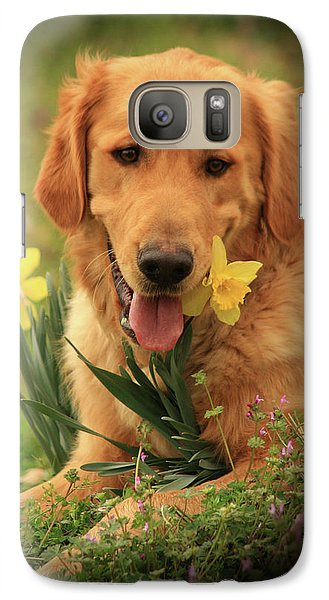 Galaxy Case featuring the photograph Daffodil Dreams by Kim Henderson