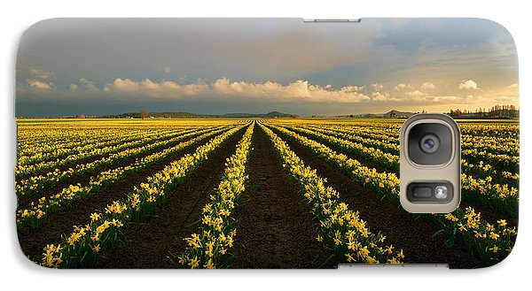 Galaxy Case featuring the photograph Daffodil Storm by Mike Dawson