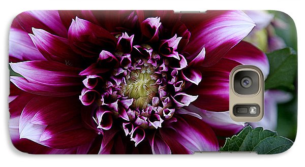 Galaxy Case featuring the photograph Dahlia by Denise Romano