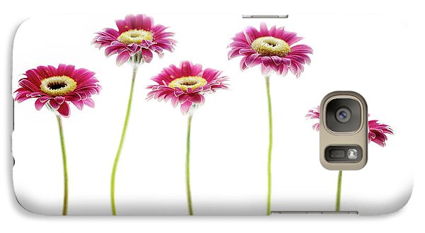 Galaxy Case featuring the photograph Daisies In A Row by Rebecca Cozart