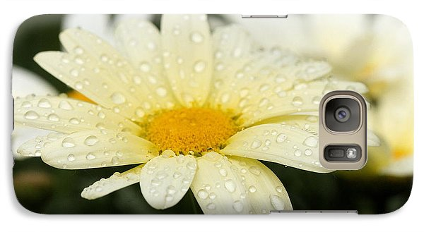 Galaxy Case featuring the photograph Daisy After Shower by Angela Rath