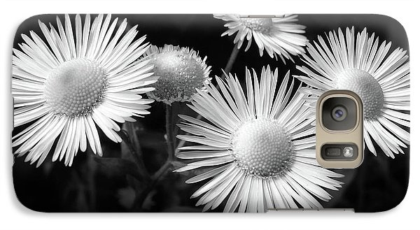 Galaxy Case featuring the photograph Daisy Flowers Black And White by Christina Rollo