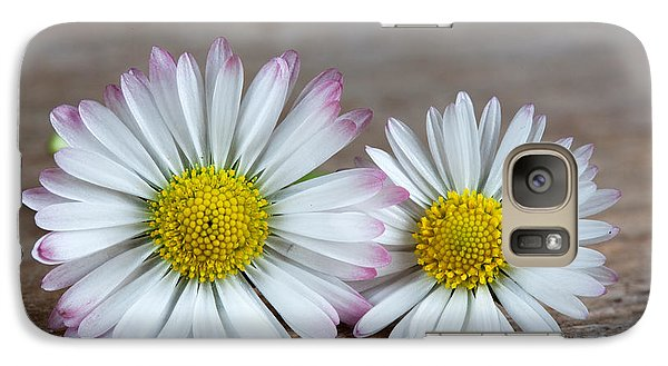 Daisy Galaxy S7 Case - Daisy Flowers by Nailia Schwarz