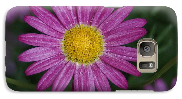 Galaxy Case featuring the photograph Daisy by Heidi Poulin