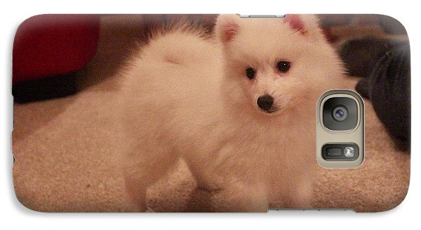 Galaxy Case featuring the photograph Daisy - Japanese Spitz by David Grant