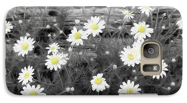 Galaxy Case featuring the photograph Daisy Patch by Benanne Stiens