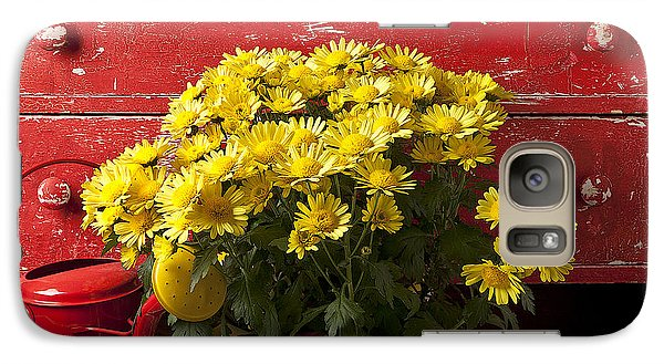 Daisy Plant In Drawers Galaxy Case by Garry Gay