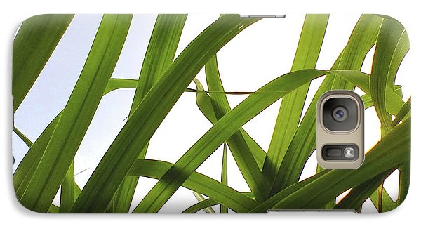 Galaxy Case featuring the photograph Dancing Bamboo by Rebecca Harman