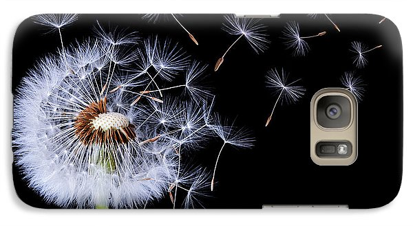 Galaxy Case featuring the photograph Dandelion Blowing On Black Background by Bess Hamiti