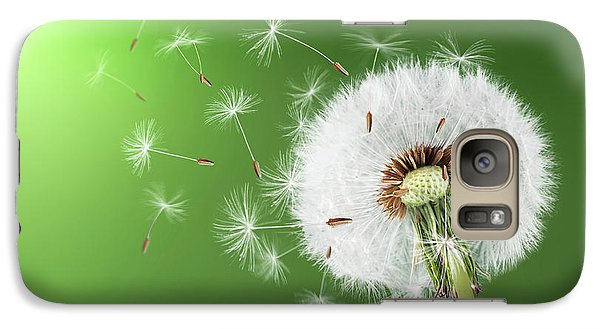 Galaxy Case featuring the photograph Dandelion Seeds by Bess Hamiti