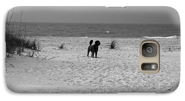 Galaxy Case featuring the photograph Dandy On The Beach by Michiale Schneider