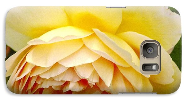 Galaxy S7 Case featuring the photograph David Austin Rose Golden Celebration 2 by Rod Ismay