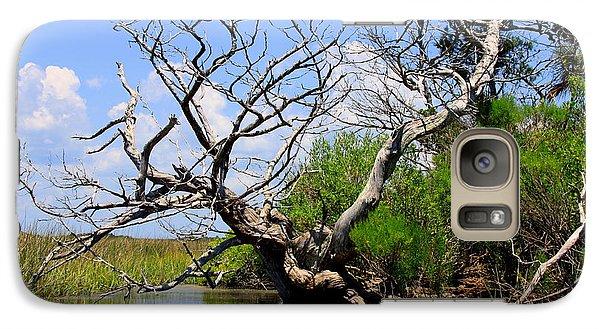 Galaxy Case featuring the photograph Dead Cedar Tree In Waccasassa Preserve by Barbara Bowen