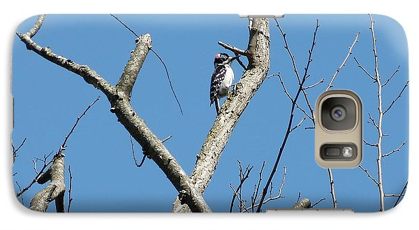 Galaxy Case featuring the photograph Dead Tree - Wildlife by Donald C Morgan