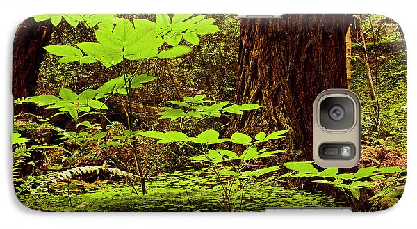 Galaxy Case featuring the photograph Deep In The Forest-lime Klin by Gary Brandes