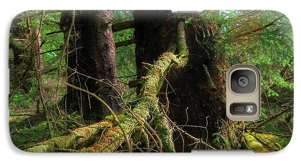Deep In The Woods Galaxy S7 Case