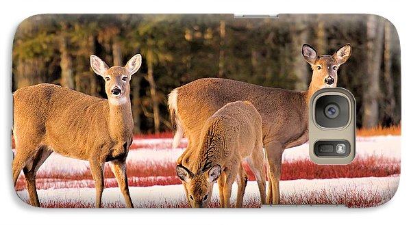Deer In Snow Galaxy S7 Case