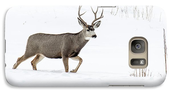 Galaxy Case featuring the photograph Deer In The Snow by Rebecca Margraf