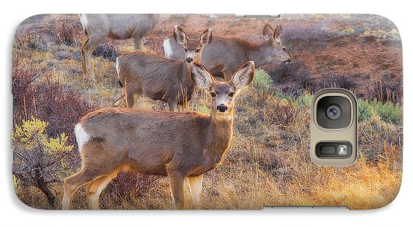 Galaxy Case featuring the photograph Deer In The Sunlight by Darren White