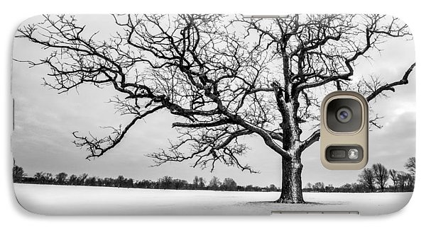 Galaxy Case featuring the photograph Delaware Park Winter Oak - Square by Chris Bordeleau