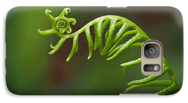 Galaxy Case featuring the photograph Delicate Fern Frond Spiral by Rona Black