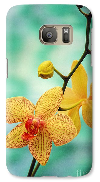 Orchid Galaxy S7 Case - Dendrobium by Allan Seiden - Printscapes