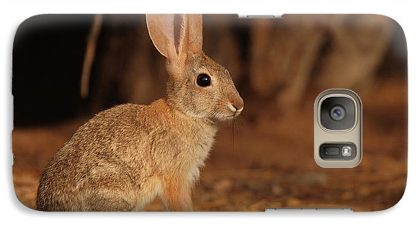 Galaxy Case featuring the photograph Desert Cottontail Posing by Max Allen