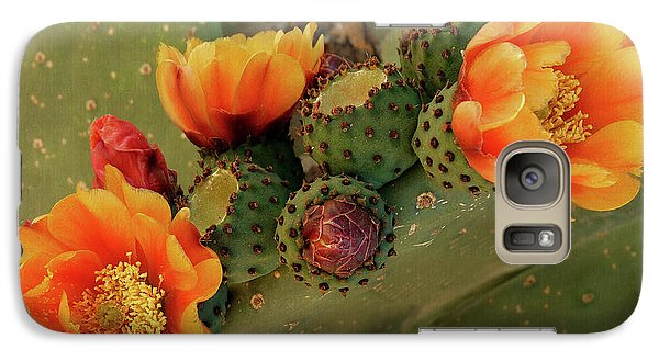 Galaxy Case featuring the photograph Desert Flame by Lucinda Walter